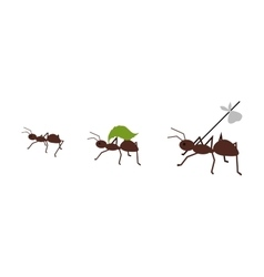 Ant Carrying Her Baggage vector