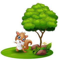 cartoon squirrel dancing under a tree on a white b vector image