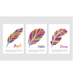 feathers with vibrant color posters set vector image