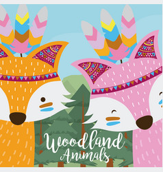 Foxes woodland animals vector