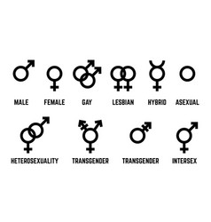 Gender symbols set icons isolated on white vector