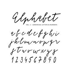 hand drawn alphabet signature script font vector image