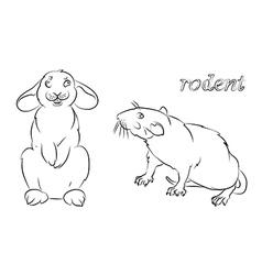 rabbit rat vector image