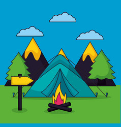 camping summer relate vector image
