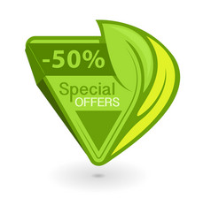 Green triangular eco tag with inscription special vector