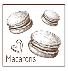 Hand drawn cute macarons isolated on white vector