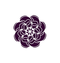 indian rose flower icon organic plant flower vector image