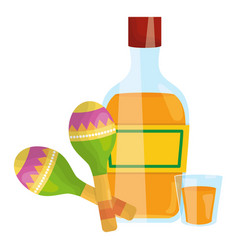maraca musical with tequila bottle vector image