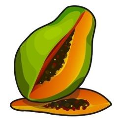 Exotic fruit papaya in cartoon style vector image vector image