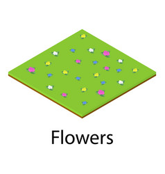 flower icon isometric style vector image