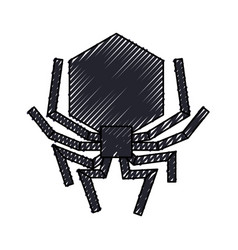 Isolated hacker virus spider vector