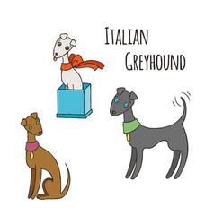 Italian greyhound cartoon dog set vector
