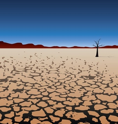 tree in dry desert vector image