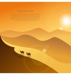 Two camels in desert vector