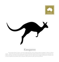 black silhouette of jumping kangaroo vector image vector image
