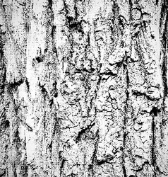 Grunge wood background vector image vector image