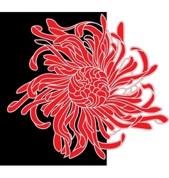 red and black flower vector image