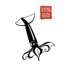 Flying Squid black and white vector image vector image