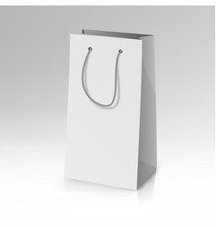 blank paper bag template realistic vector image vector image