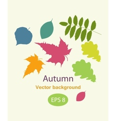 Autumnal greeting card with leave vector