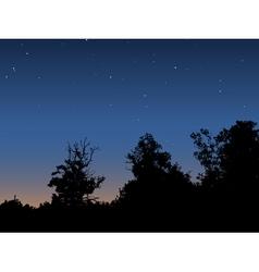 Dawn sky vector image