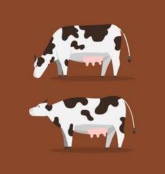 Flat cow cute cow with brown vector