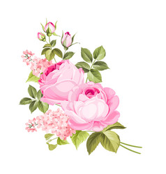 rose elegant card vector image