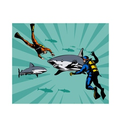 Scuba Divers and Sharks vector