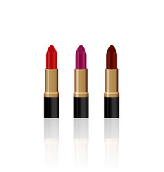 Set 3 realistic lipsticks isolated on white vector