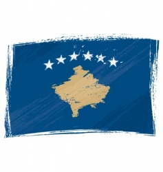grunge Kosovo flag vector image vector image