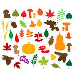 autumn nature silhouettes leaves fruits veggies vector image
