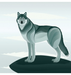 beautiful wolf vector image