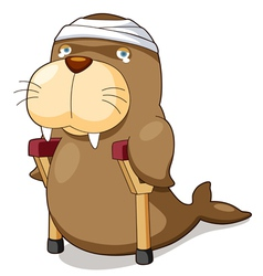 Cartoon sea lion be injured vector image