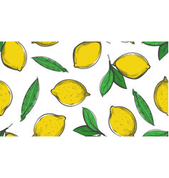 citrus sketch pattern summer lemon background vector image