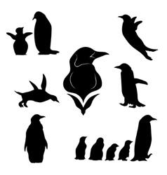Penguin set vector image