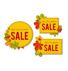 sale banner set with bright autumn leaves isolated vector image