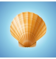Realistic scallop seashell isolated background vector image vector image
