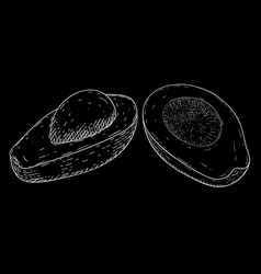 avocado sketch white hand drawing on black vector image