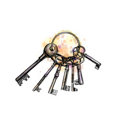 bunch old key from a splash watercolor hand vector image