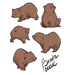 flat set large bear in different poses vector image