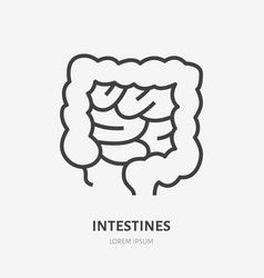 Gut flat line icon thin pictogram human vector