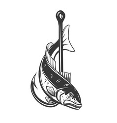 pikeperch and fishing hook design element vector image