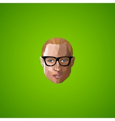 with an caucasian guy face in polygonal style vector image
