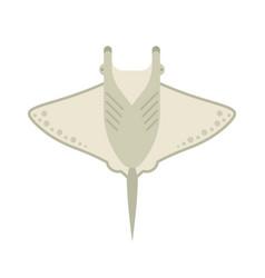 manta ray or stingray vector image vector image