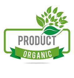 natural product organic healthy garden design vector image vector image