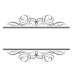 Calligraphy vignette ornamental penmanship decorat vector