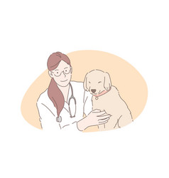 veterinarian hospital vet clinic pets healthcare vector image