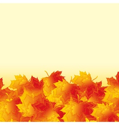 Autumn background with orange maple leaf fall vector image vector image