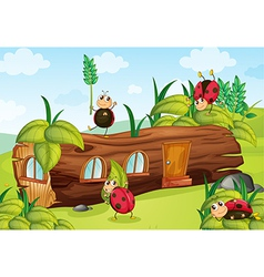 Ladybugs and a wood house vector image