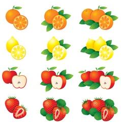 Orange Lemon Apple Strawberry vector image vector image